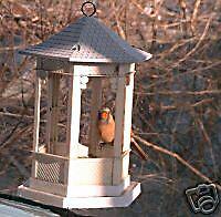 BirdWatchingwithoutBeingDetectedALittleSecret - Window stickers to deter birds