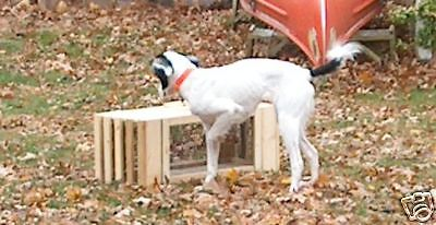 QUAIL Cage.Dog.Training.2.cages.Transfer of live.Birds/MADE IN U.S.A. BY VET'S