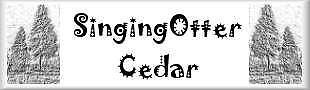 SingingOtter Cedar